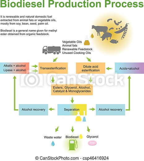 Biodiesel Production Process. - csp46416924