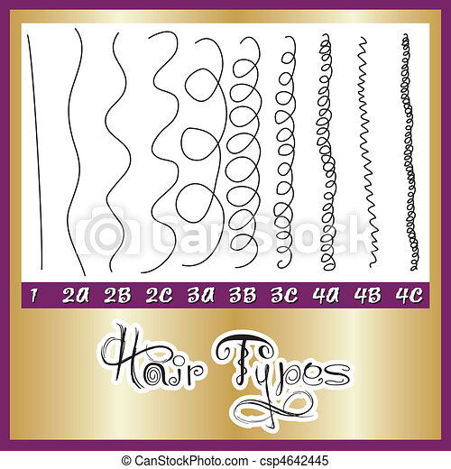 Hair Types Chart - csp4642445
