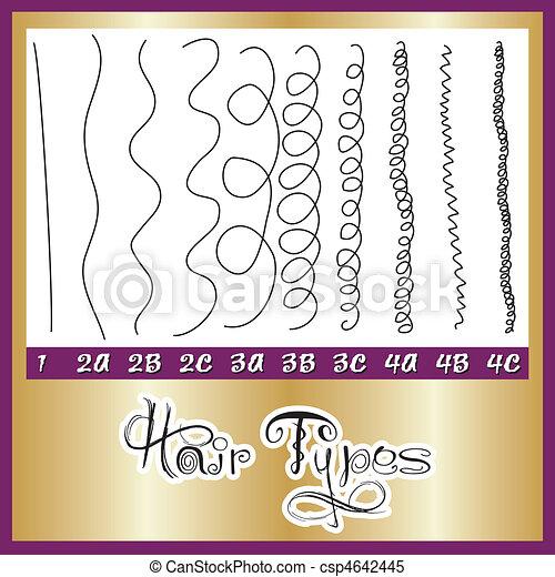 Hair Types Chart - csp4642445