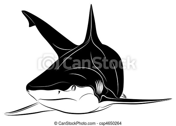Shark - csp4650264