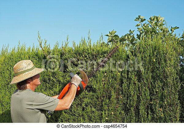 photo de taille haie jardinier taille haie lectrique pruner csp4654754 recherchez des. Black Bedroom Furniture Sets. Home Design Ideas