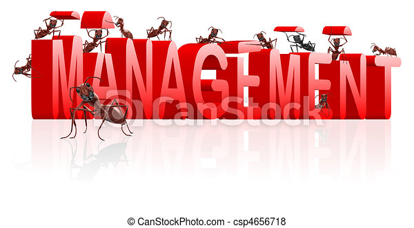 management manage organisation organise - csp4656718