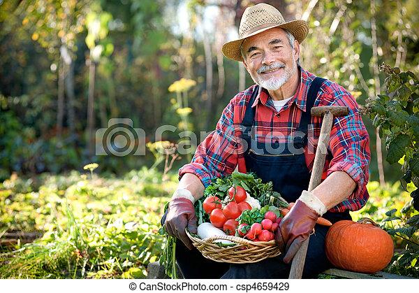 Gardening - csp4659429