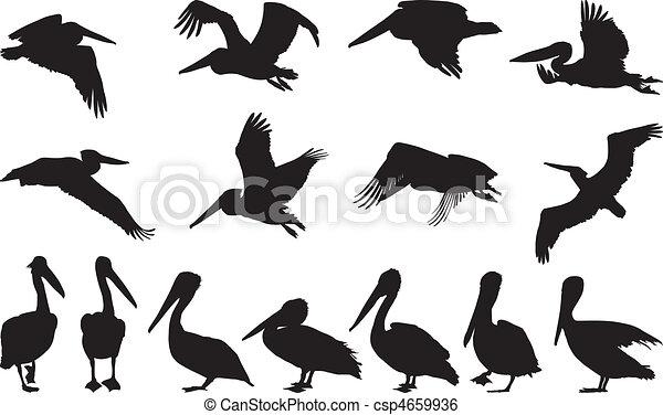 Clip Art Vector Of Pelican Silhouettes Vector