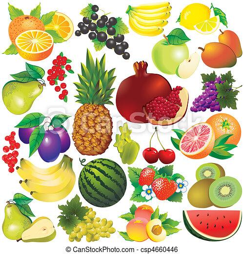 Fruta Vectorial Frutas Clip Art Vectorial