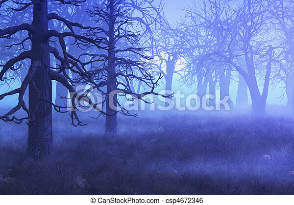 Misty Morning Forest - csp4672346