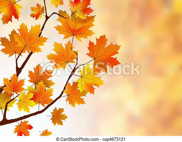 Beautiful background with maple leaves. - csp4673121