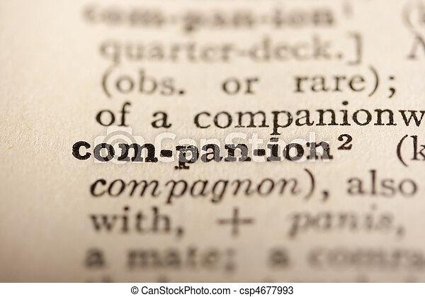Word companion - csp4677993