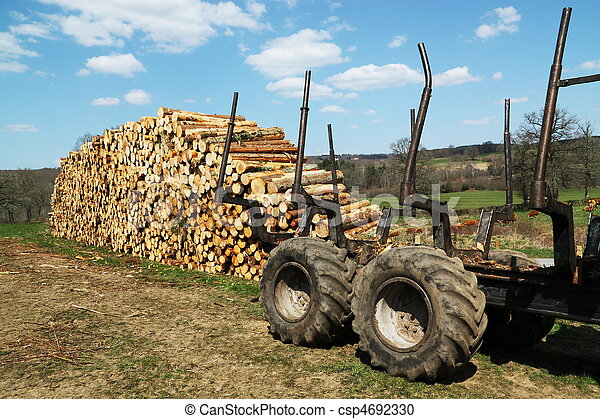Sustainable Resources Timber Wood - csp4692330