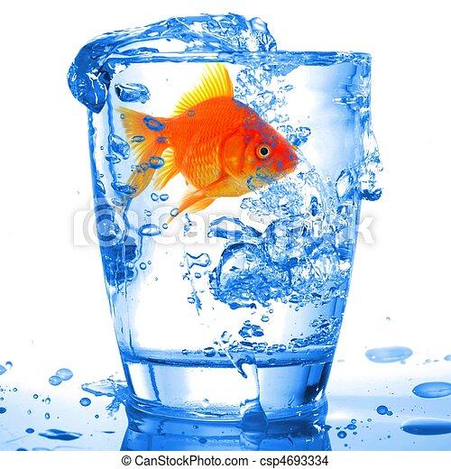 Photo de poisson rouge dans cocktail boisson verre et for Tarif poisson rouge