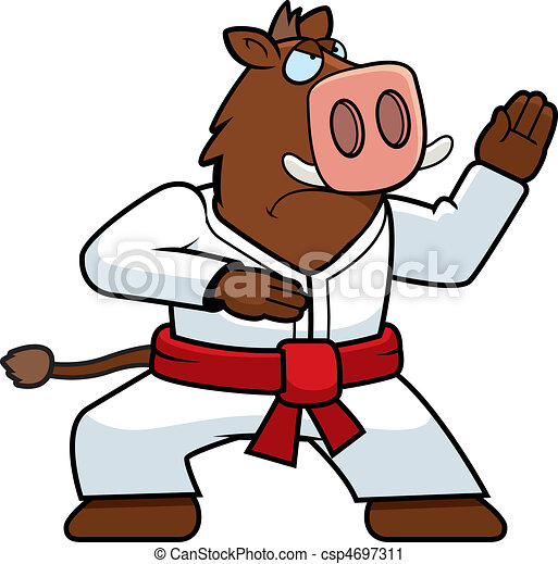 Karate Boar - csp4697311