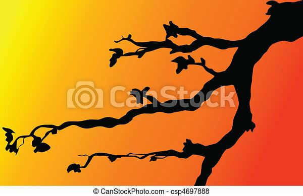 branches on twilight - csp4697888