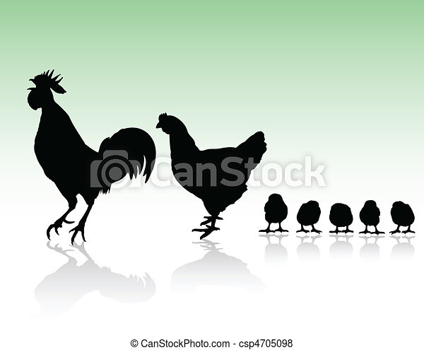 chicken family silhouettes - csp4705098