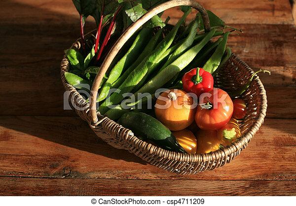 Organic Gardener - csp4711209