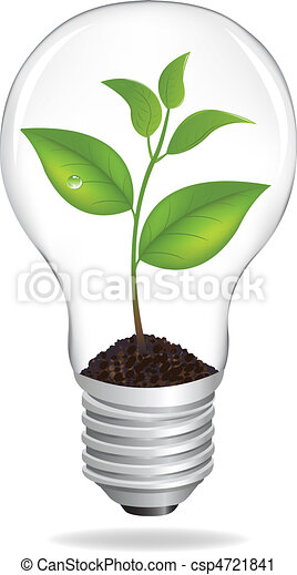 Bulb With Sprout - csp4721841