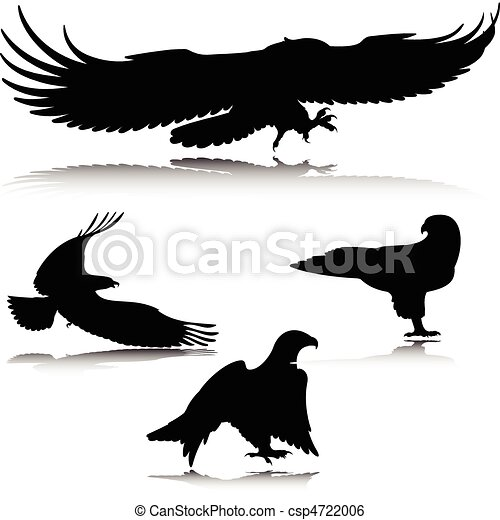 eagle in action vector silhouettes - csp4722006