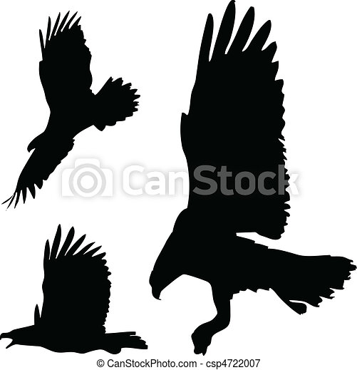 eagles action vector silhouettes - csp4722007