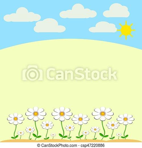 White Daisies - csp47220886