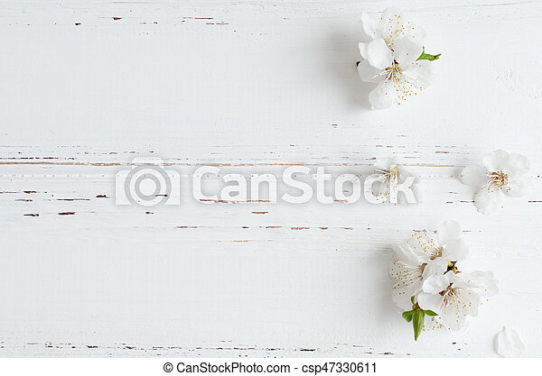 Spring cherry blossom on rustic wooden background. - csp47330611