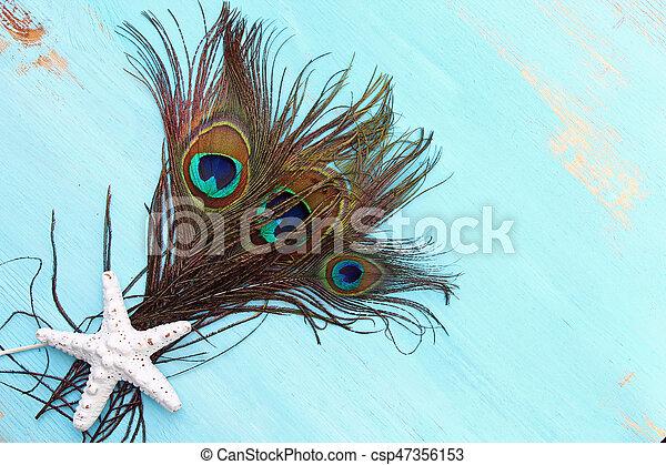A Peacock feather - csp47356153