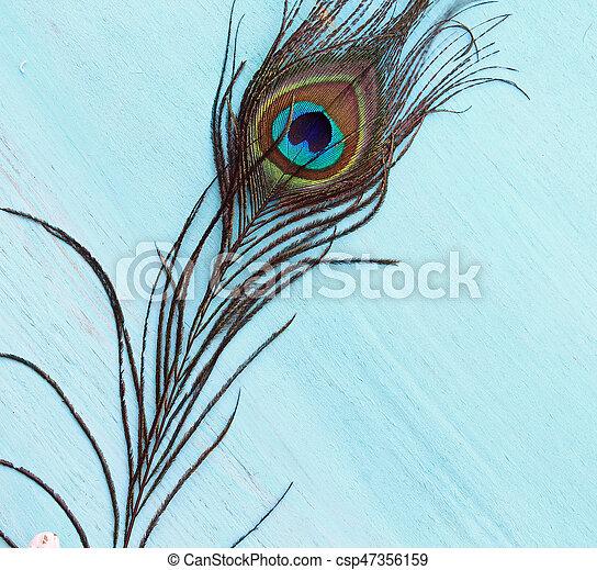 A Peacock feather - csp47356159