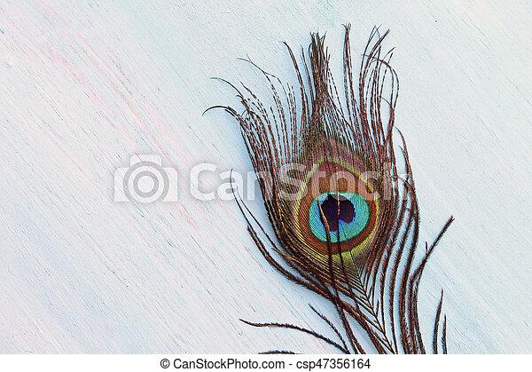 A Peacock feather - csp47356164