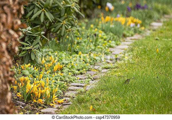 Spring flowers in  beautiful colors - csp47370959