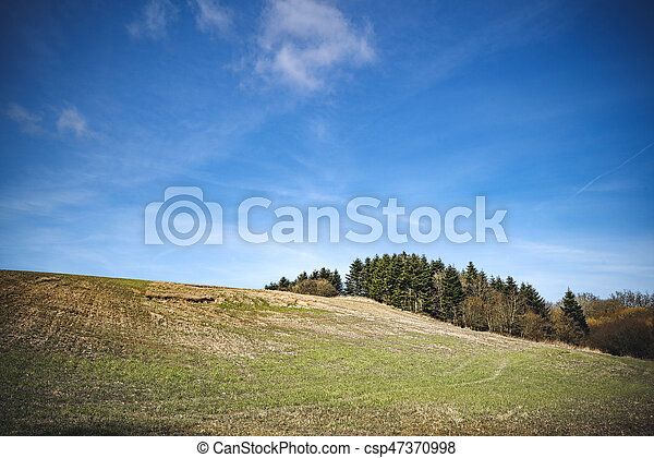 Rural landscape with trees on a hill - csp47370998