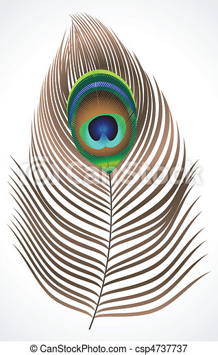 abstract peacock feather - csp4737737
