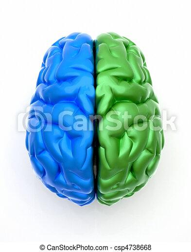 Blue end green brain - csp4738668