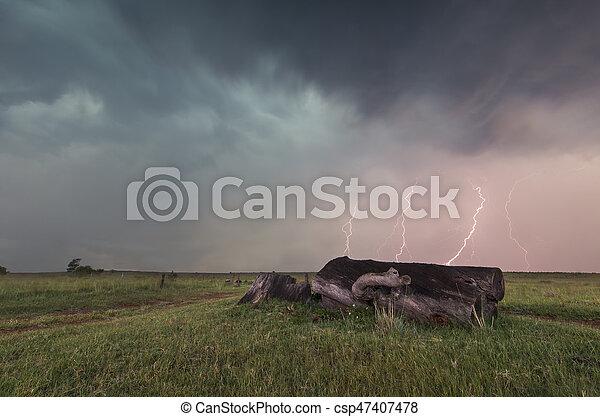 Landscape with lightning striking behind dead tree trunk - csp47407478