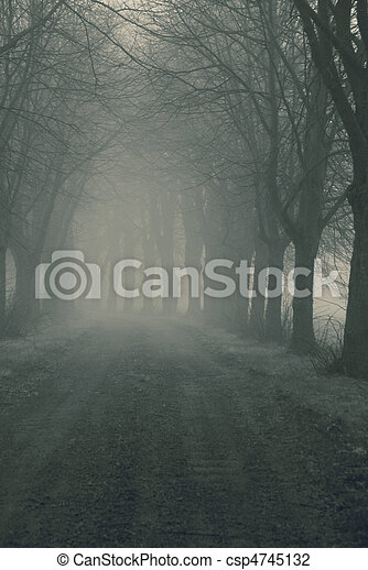 Avenue in fog - csp4745132