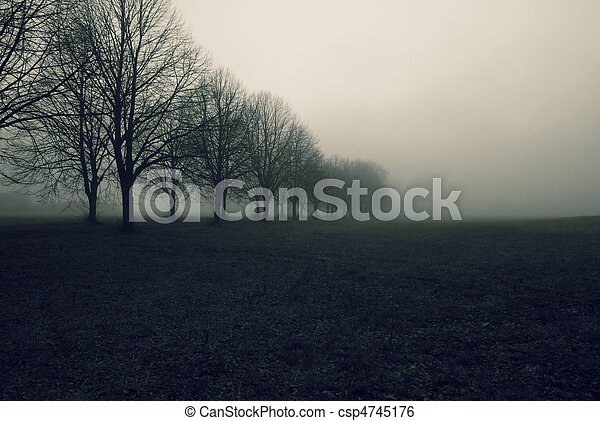 Avenue in fog - csp4745176