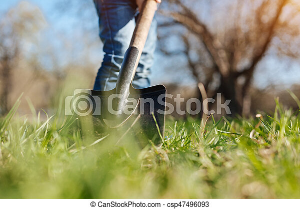 Gardening is a recreation. A little boy wearing jeans helping his family by digging with a spade in backyard