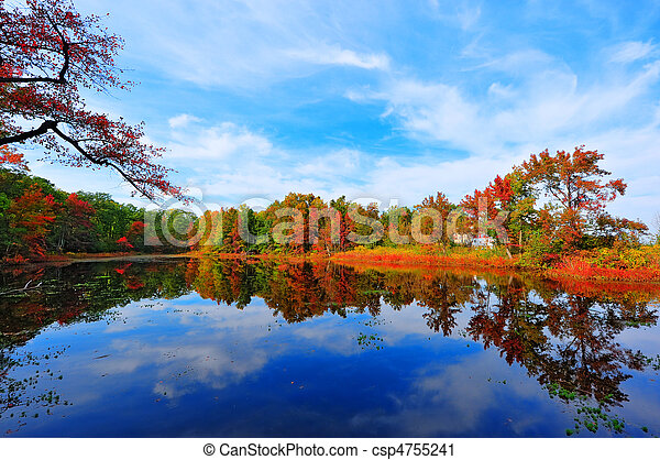 Autumn Reflections in a pond near the Chesapeake Bay, Maryland - csp4755241