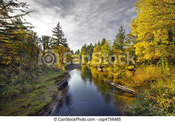 Fall Colors along Thomas Creek Oregon - csp4756485