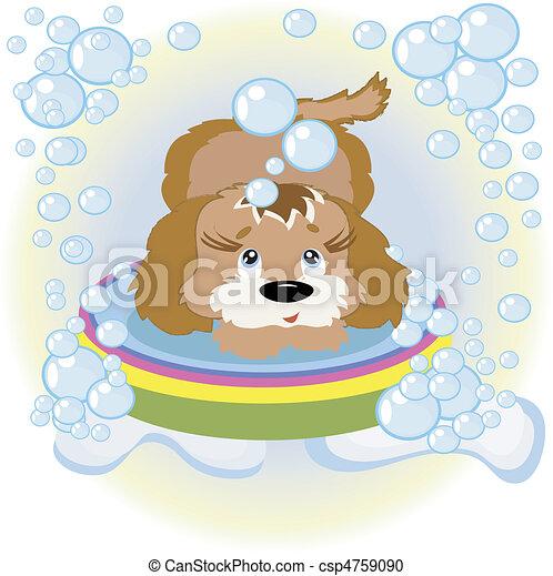 Puppy - csp4759090