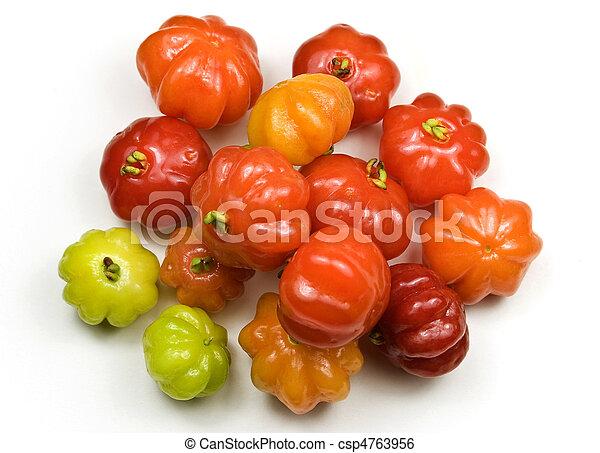 Brazilian Cherry - Pitanga - csp4763956