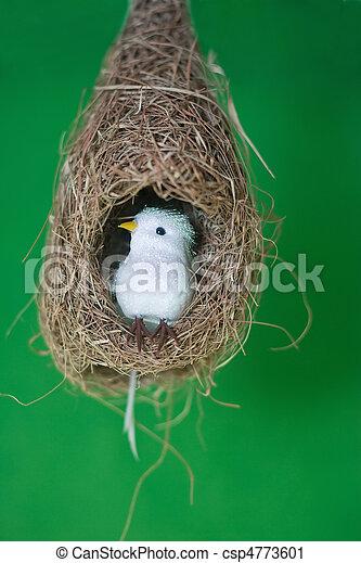 White bird in nest  - csp4773601