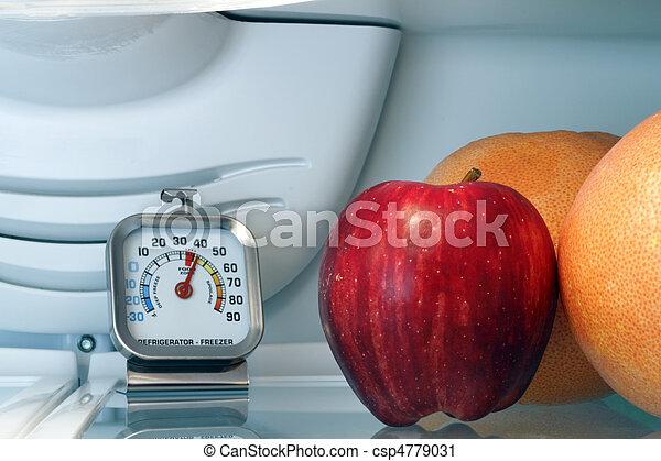 Refrigerator Temperature - csp4779031