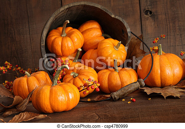Wooden bucket filled with tiny pumpkins - csp4780999