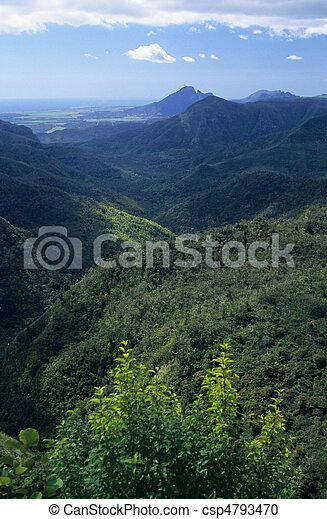 Black river gorge Mauritius Island - csp4793470