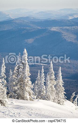 Winter panorama - csp4794715