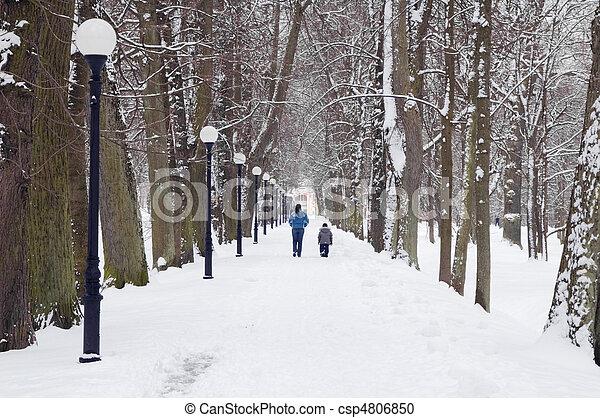 Avenue in the winter - csp4806850