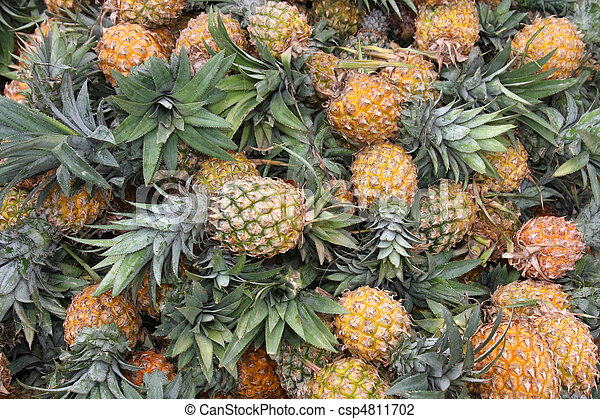 A huge amount of fresh pineapple - csp4811702