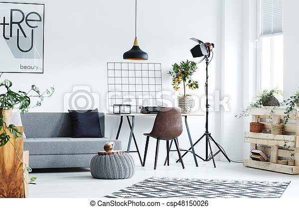 Minimalistic studio flat decorated with creative accessories