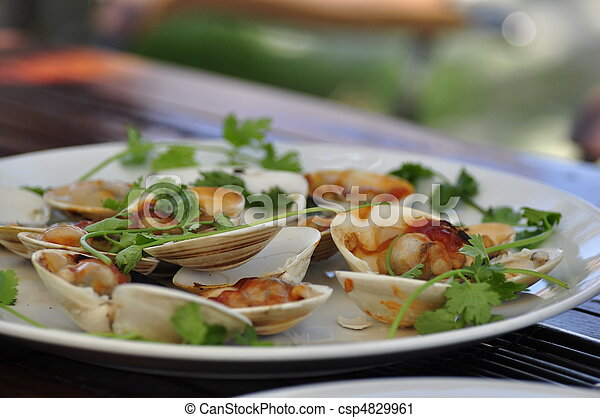 Delicious Clams - csp4829961