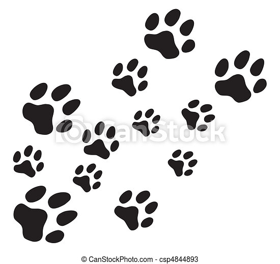 Vector paw prints - csp4844893