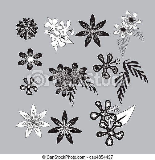 set of beautiful Hawaiian flowers of different shapes