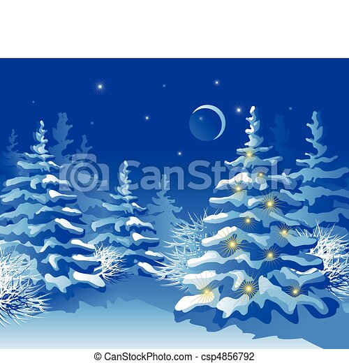 Winter Christmas forest at night - csp4856792